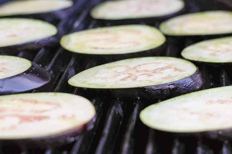 Placez les tranches d'aubergine huilé sur le gril